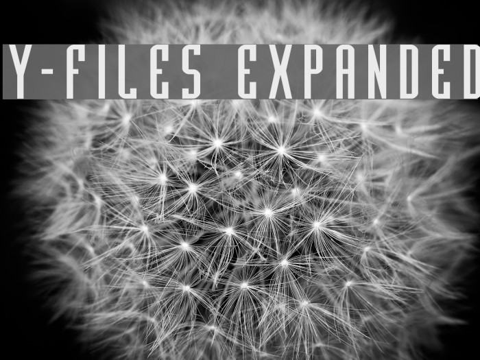 Y-Files Expanded फ़ॉन्ट examples