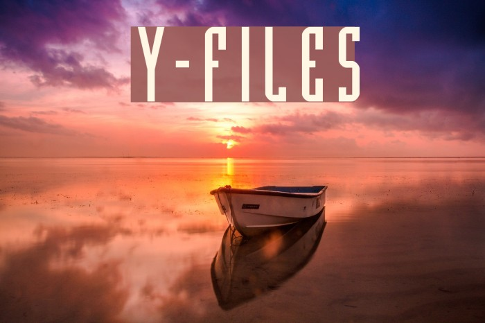 Y-Files 字体 examples