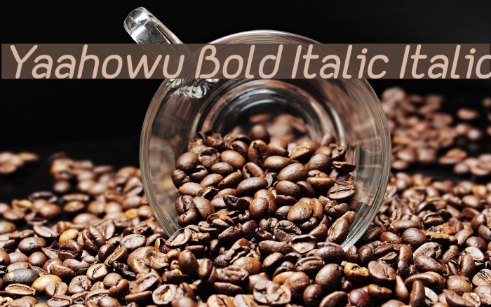 Yaahowu Bold Italic Italic फ़ॉन्ट examples