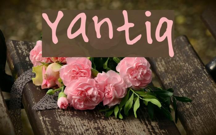 Yantiq Font examples