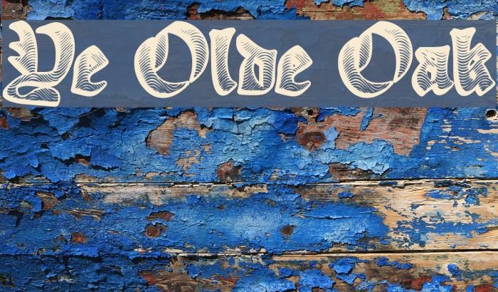 Ye Olde Oak Polices examples