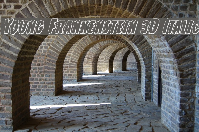 Young Frankenstein 3D Italic Font examples