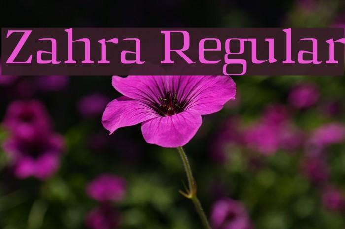 Zahra Regular फ़ॉन्ट examples