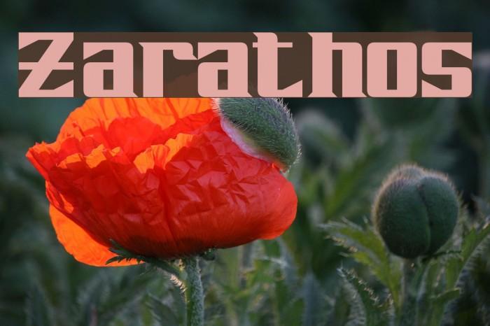 Zarathos Fonte examples