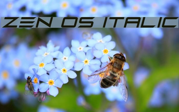 Zen Os Italic फ़ॉन्ट examples