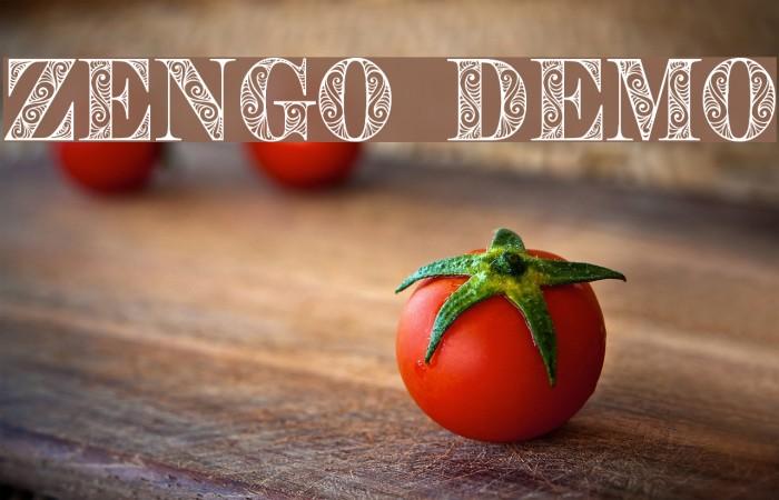 Zengo Demo Schriftart examples