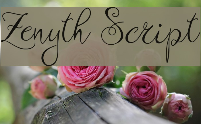 Zenyth Script Schriftart examples