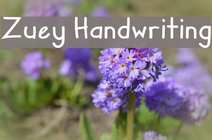 Zuey Handwriting Fonte examples